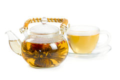 Flowering Chinese tea Royalty Free Stock Photography