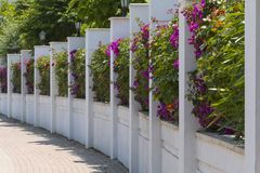 Flowering City Fence Royalty Free Stock Photo