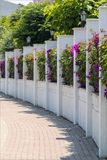 Flowering City Fence Royalty Free Stock Photos
