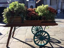 Flowering cradle. Autumn flowers on a cradle in Covent Garden London royalty free stock photo