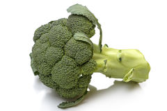 Flowering crest of a Broccoli royalty free stock image