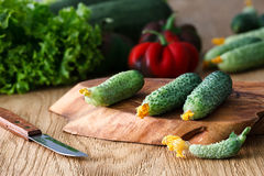 Flowering cucumbers on a wooden board Stock Photo