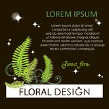 Flowering fern. Forest fern at night. Poster, label, green flower card with place for text. The image can be used by landscape designers, florists Royalty Free Stock Photo