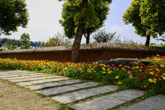 Flowering flagstone path outside enclosure in sunny spring after Royalty Free Stock Photos