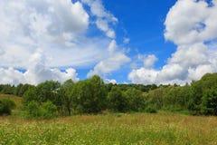 Flowering grassy meadow under blue cloudy sky. In Bieszczady, Bieszczady,Podkarpacie,Poland,Europe Royalty Free Stock Photos