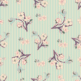 Flowering hand drown cherry blossom seamless. Vintage background Stock Photo