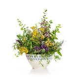 Flowering Herbs Royalty Free Stock Image