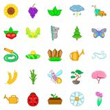 Flowering icons set, cartoon style. Flowering icons set. Cartoon set of 25 flowering vector icons for web isolated on white background Stock Images