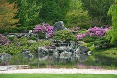 Flowering Japanese garden Royalty Free Stock Photo