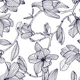 Flowering magnolia. Hand drawn black and white seamless pattern with blooming flowers. vector wallpaper. vector illustration