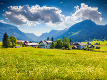Flowering meadows around Gosau village at summer sunny day Royalty Free Stock Image