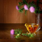 Flowering plant milk thistle and oil glass. Healing herb on wood Royalty Free Stock Image