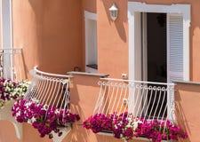 Flowering plants on Positano Villa Royalty Free Stock Photo