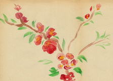 Flowering plum. Painted watercolors in the Chinese style vector illustration