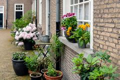 Flowering potted plants in a beguinage. Colorful flowering potted plants in a historic beguinage in the Dutch city of Breda, North Brabant Stock Photo