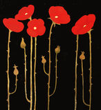 Flowering red poppies on black background, painting artwork Stock Photo