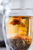 Flowering Tea Stock Images
