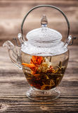 Flowering tea Stock Photos