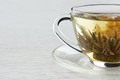 Flowering tea. In transparent teacup royalty free stock images