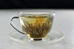 Flowering tea Stock Photo