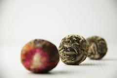Flowering tea stock image