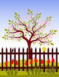 Flowering tree behind fence Royalty Free Stock Photo