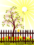 Flowering tree behind fence Stock Photos