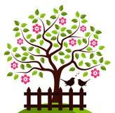 Flowering tree and birds Royalty Free Stock Photos