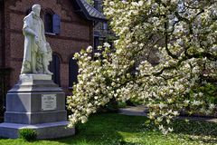 Flowering tree in front of a statue