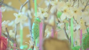 Flowering tree with hanging decorations hearts. Close up. Decorations pink and green and grey hearts are hanging from flowering tree, knitted hearts are adorn stock video
