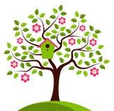Flowering tree with nesting bird box Royalty Free Stock Photo