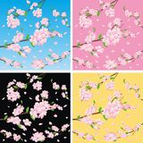 Flowering trees on color background Royalty Free Stock Photography