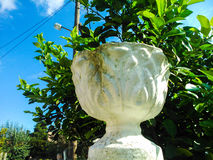 flowerpot αγελάδων αστείο άγαλμα κήπων Στοκ φωτογραφία με δικαίωμα ελεύθερης χρήσης