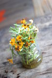 Flowerpot εκλεκτής ποιότητας υπόβαθρο Στοκ Εικόνες