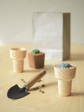Flowerpot κώνων παγωτού Στοκ εικόνα με δικαίωμα ελεύθερης χρήσης