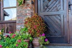 Flowerpot με τα λουλούδια στοκ φωτογραφία με δικαίωμα ελεύθερης χρήσης