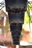 Flowerpot στον κήπο Στοκ Φωτογραφίες
