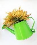 Flowerpot Lizenzfreie Stockfotos