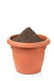 Flowerpot immagine stock