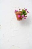 flowerpot стоковое фото