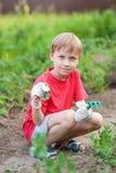 το παιδί αγορακιών σκάβει εξερευνά flowerpot λουλουδιών το καλλιεργώντας μικρό παιδί φτυαριών παιχνιδιού πράσινων φυτών πλαστικό Στοκ Φωτογραφίες