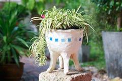Flowerpot3 Images libres de droits