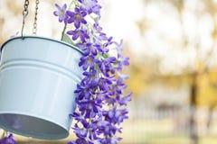 flowerpot στοκ εικόνες