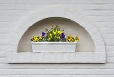 Πλαισιωμένο Flowerpot κήπων στον άσπρο τοίχο Στοκ εικόνα με δικαίωμα ελεύθερης χρήσης