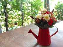 flowerpot Fotografia Royalty Free