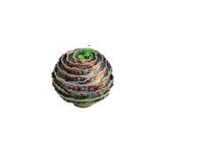flowerpot στοκ εικόνα