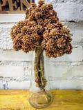 flowerpot Imágenes de archivo libres de regalías