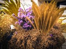 flowerpot Fotos de archivo