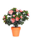 Flowerpot with artificial flowers Royalty Free Stock Photography