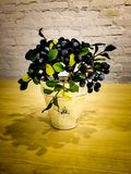 Flowerpot. Beautiful Flowerpot in coffee cafe stock photo